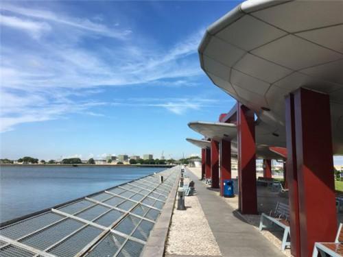 【青進會X社諮會】施逸、許龍通:關於北區水塘環境設施優化建議